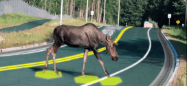 If You Need Any Convincing That Solar Roadways Are The Future, This Video Will Help