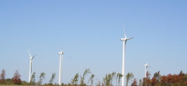 Solar and wind power is thriving despite the low oil price